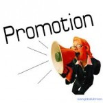Promotions in Newsletters: What Types & How Often?